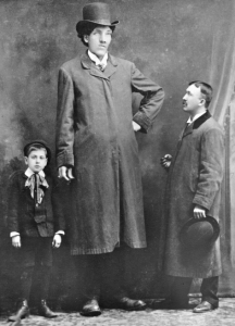 10 Tallest Men Ever See In This World
