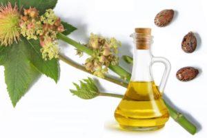 <b>13 Amazing Benefits Of Castor Oil</b>