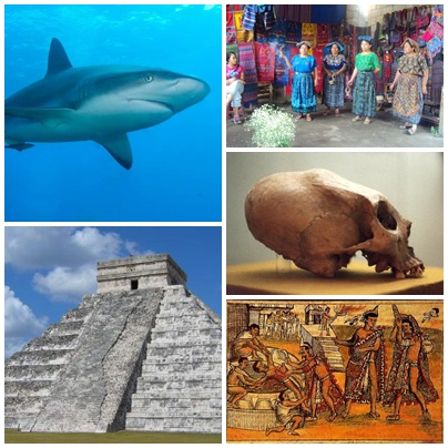 10 Surprising Mayans Facts Ever Found In The World