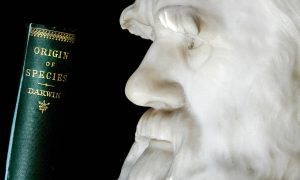 <b>Top 10 Best Nonfiction Books Of All Time</b>