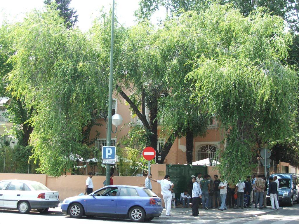 Pakistan Embassy In Spain